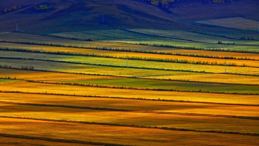 「フルンボイル草原」中国, 内モンゴル