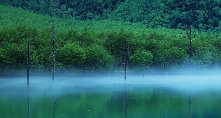 「大正池」長野, 松本, 上高地