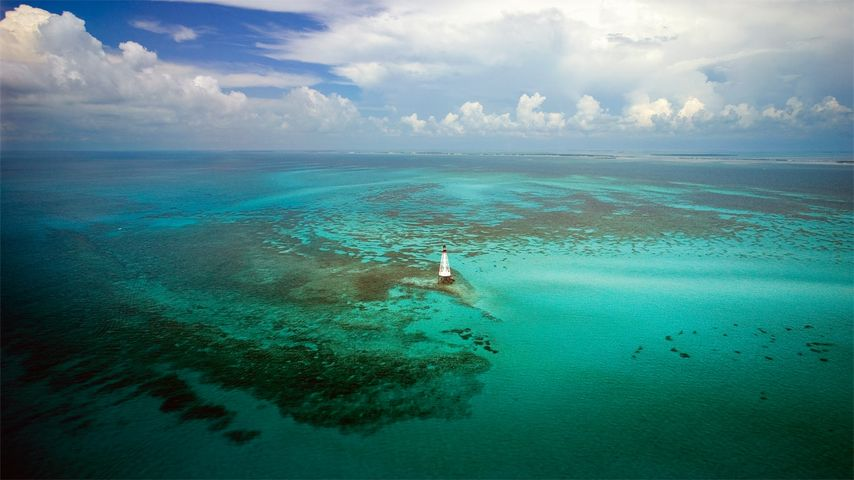 「フロリダキーズの灯台」アメリカ, フロリダ州
