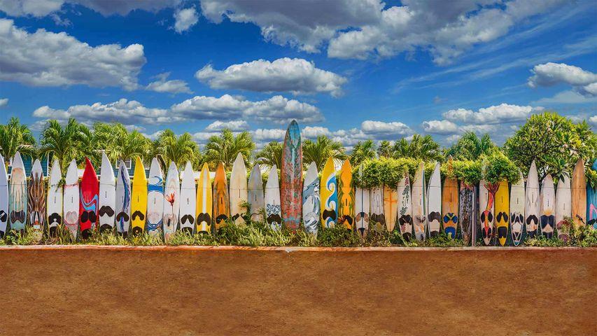 「パイアのサーフボードのフェンス」米国, ハワイ, マウイ島