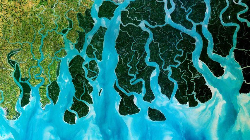 「ガンジス川デルタ」インド・バングラディッシュ