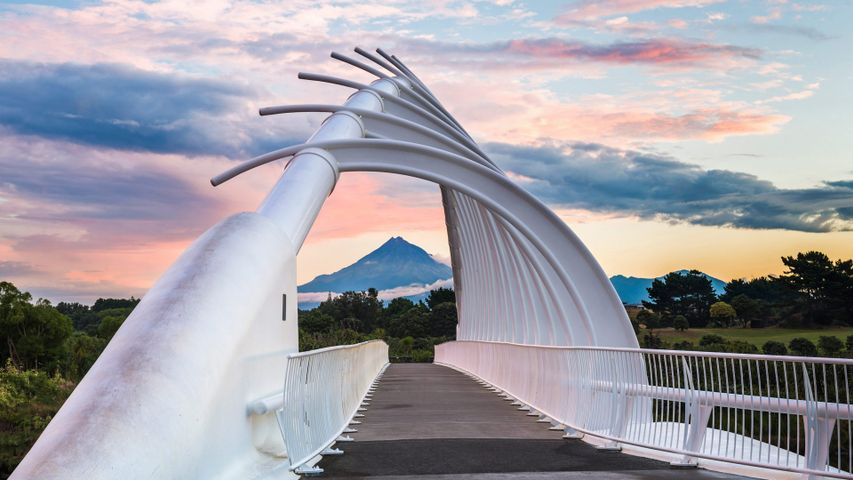「テ・レワレワ橋」ニュージーランド北島, ニュープリマス