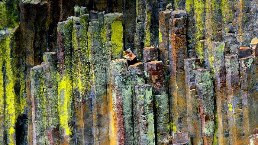 「玄武岩の柱状節理」アメリカ, オレゴン州