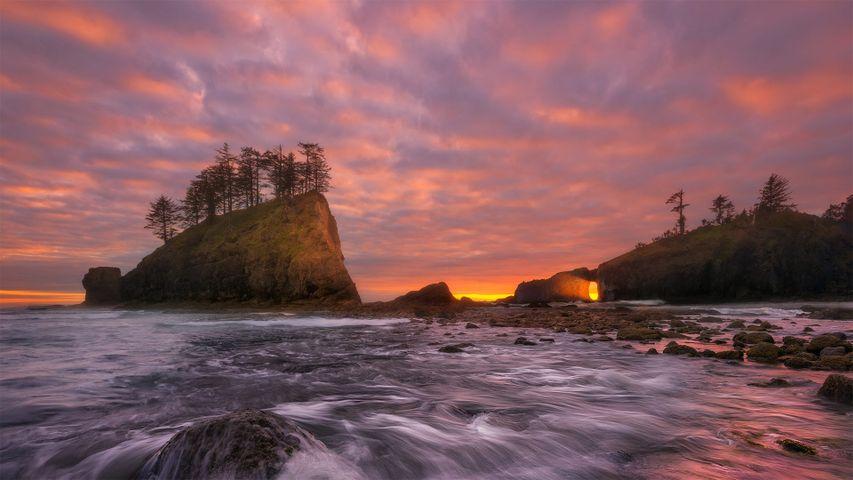 「オリンピックコースト国立海洋保護区」米国, ワシントン州