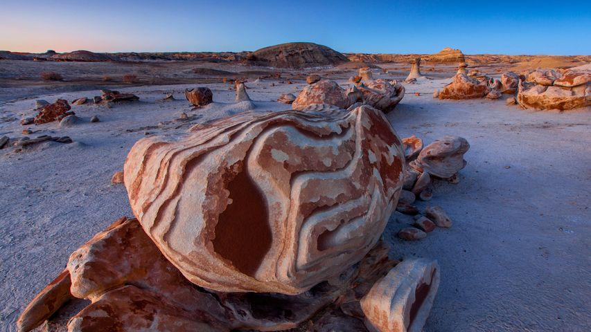 「ビスタイ/デナジンウィルダネスのエイリアンの孵化場」米国, ニューメキシコ州