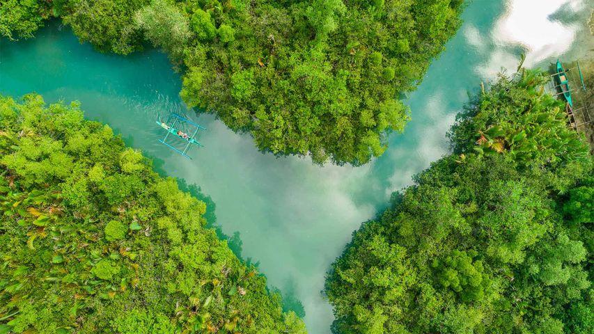 「ボホ川」フィリピン, セブ島