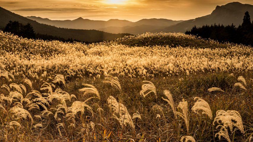 「曽爾高原の夕焼け」奈良県