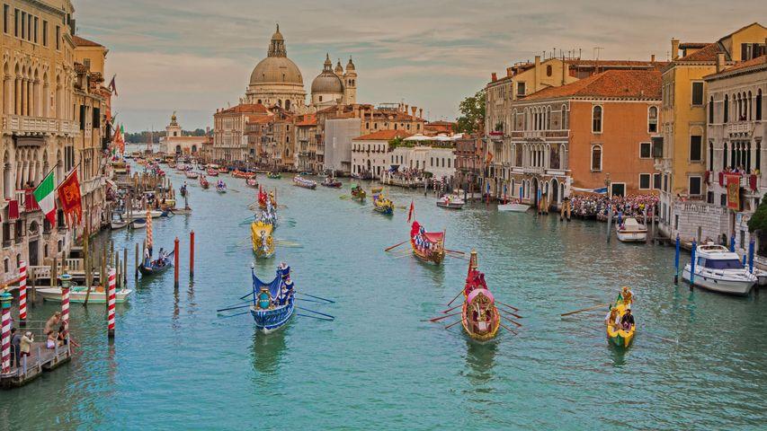 「ヴェネツィア大運河のレガッタ・ストーリカ」イタリア