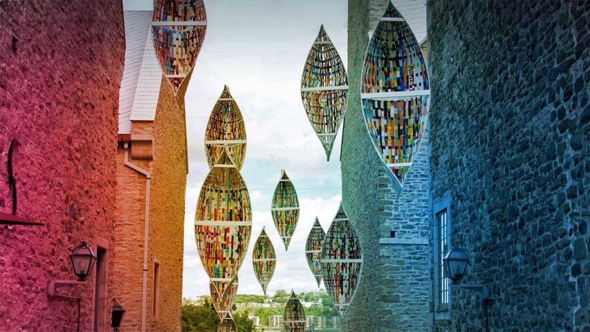 「ケベック旧市街のアートインスタレーション」カナダ, ケベック州