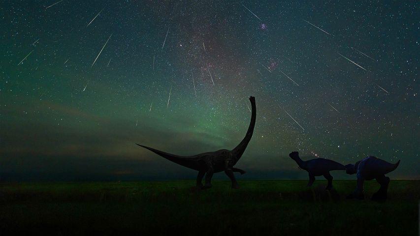 「エレンホト恐竜博物館から見たペルセウス座流星群」中国, 内モンゴル