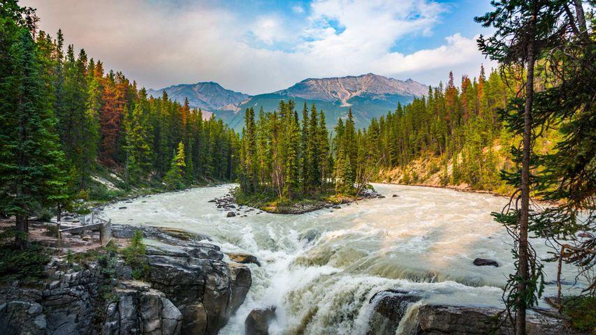 「サンワプタ滝」カナダ, ジャスパー国立公園