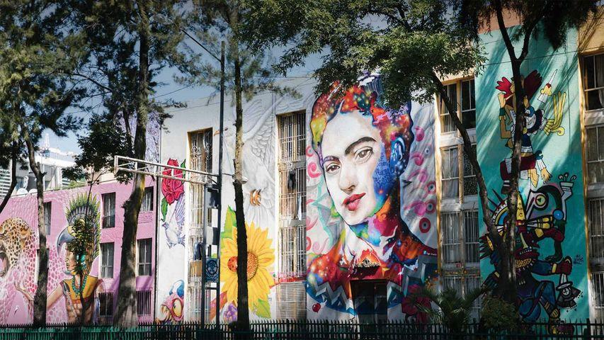 「フリーダ・カーロの壁画」メキシコ, メキシコシティ