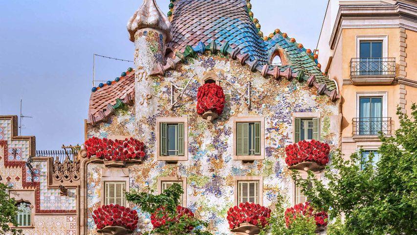 「バラが飾られたカサ・バトリョ」スペイン, バルセロナ