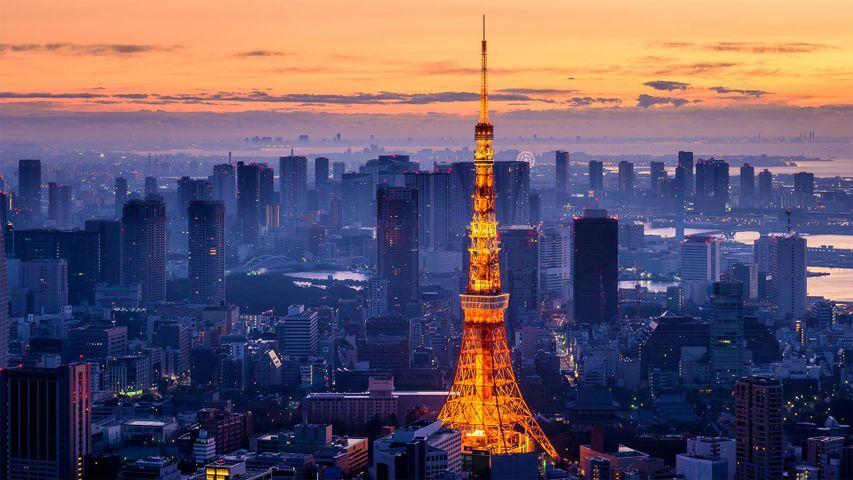 「東京タワー」東京都, 港区
