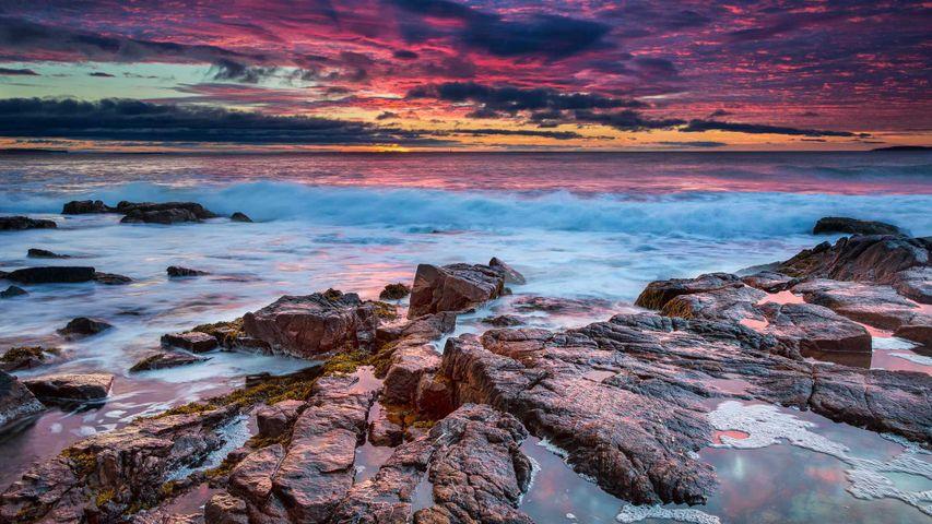 「アーカディア国立公園の夜明け」米国メイン州