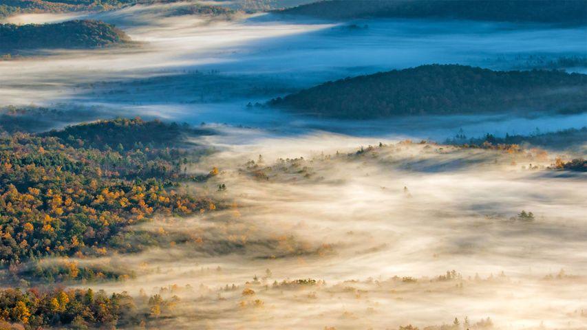 「ピスガ国立森林」米国ノースカロライナ州, ブレバード