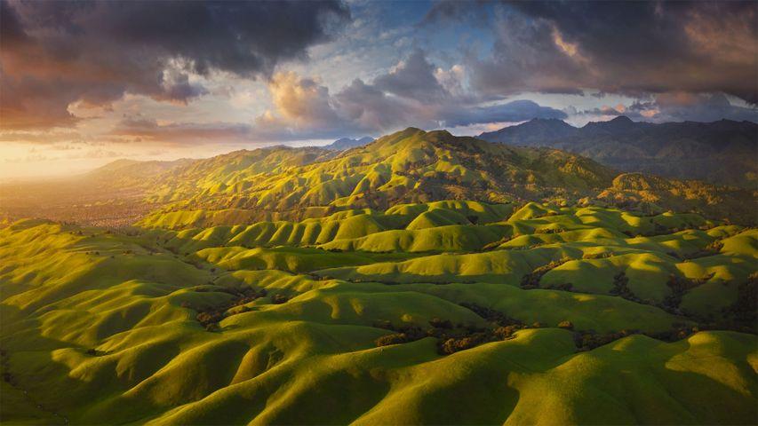 「ディアブロ山脈のフットヒルズ」米国, カリフォルニア州
