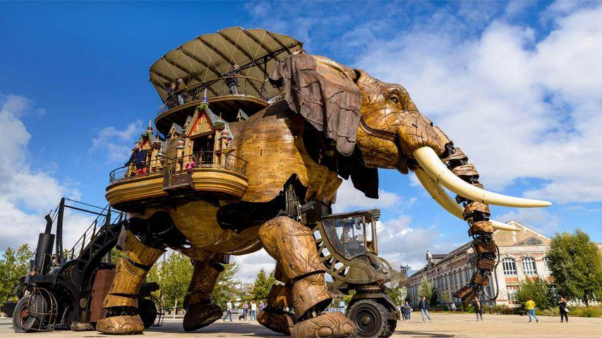 「ラ・マシンの象」フランス, ナント